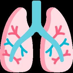 Lungenkrankheiten
